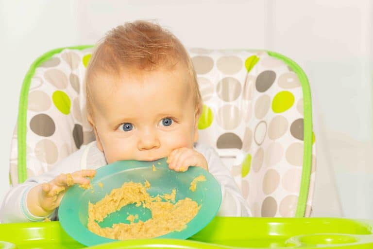 Messy toddler hold porridge plate sit in highchair