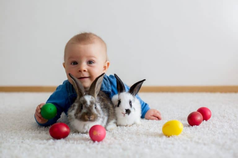 Little toddler child, baby boy, playing with bunnies and easter eggs at home